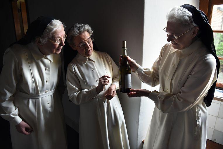 Maria Magdalena: 'Toen het woord wijngaard viel, was het voor mij klaar. Wijn past wel bij ons.' Beeld null