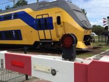 'Boomduiker' bijna geraakt door voorbijrazende trein, ProRail doet aangifte: 'Dit is onverantwoord'