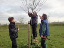 Deventer stichting schenkt Apeldoorn boomgaard