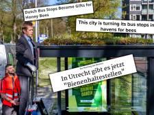 In het buitenland zijn ze lovend over bijzondere groene bushokjes in Utrecht: 'Cadeau voor de honingbij'