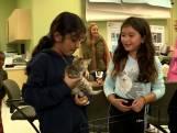 """Un refuge animalier organise une """"pyjama party"""" pour une collecte de dons"""