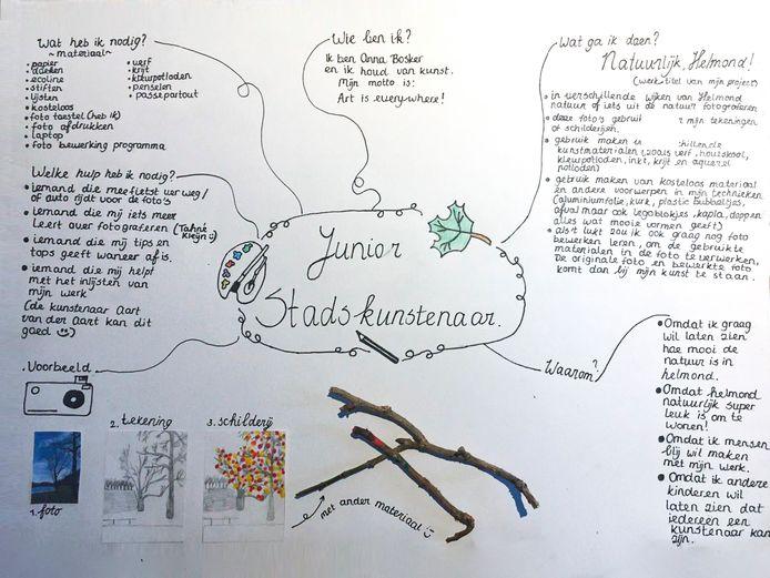 Het plan van Anna Bosker.