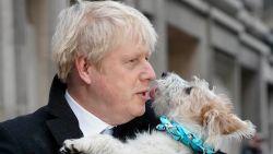 Wat te verwachten met Boris Johnson (opnieuw) aan het roer?