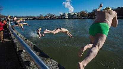 Honderdtal durvers neemt ijskoude duik in Maas in Hoei
