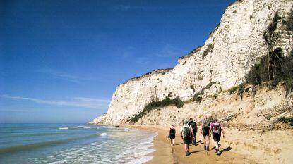 1 op de 5 reizen in zomer al geannuleerd