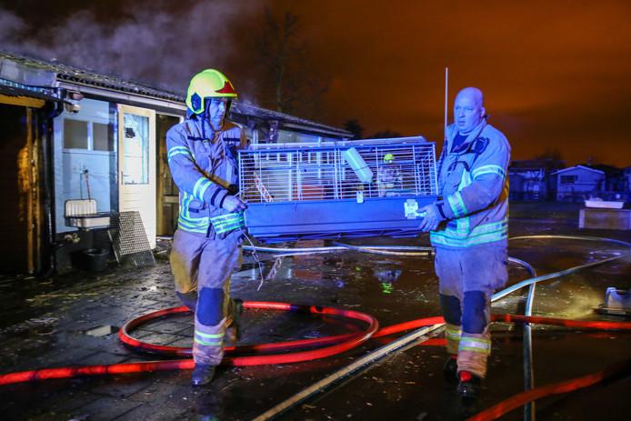 De ravage was groot nadat er in het eerste weekend van januari brand uitbrak bij Dierenhoek 't Sparretje in Maassluis.