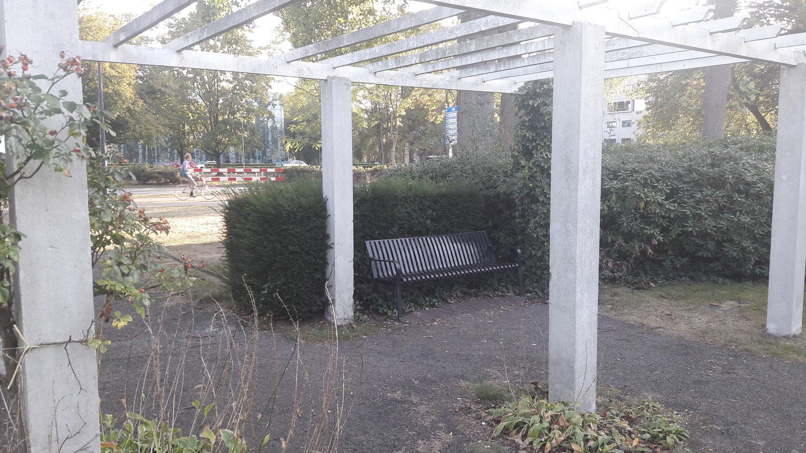 In het Bredase Van Koolwijkpark staan niet veel banken meer. De bank op de foto is een van de laatste.