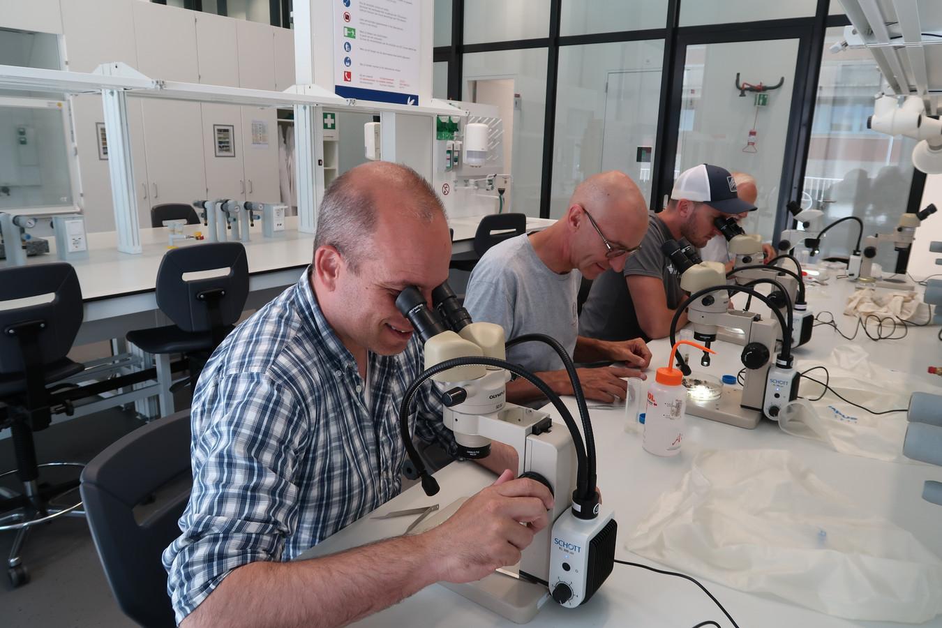 Burgerwetenschappers aan het werk in het VU-laboratorium.
