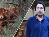 De man die koe Hermien redde van de slacht