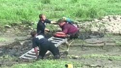 Man met papegaai op schouder zit vast in modder: brandweer moet uitrukken voor erg ongewone redding