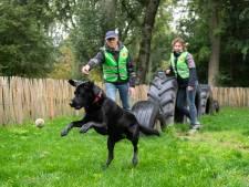 Groenstrook Hank wordt een ecologische speel- en pluktuin met speurroute en trimbaan