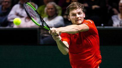 Goffin overweegt hernieuwde samenwerking met Thomas Johansson - Bencic versus Kvitova in Dubai