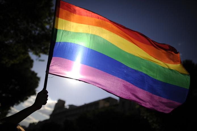 De regenboogvlag geldt sinds de jaren 70 als symbool van de homobeweging.