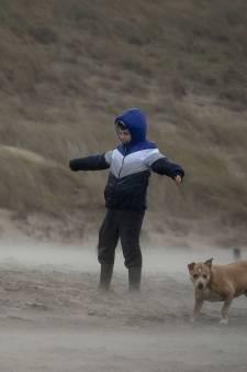 Donderdag kans op zware windstoten