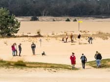 'Gigantisch' druk in Loonse en Drunense Duinen en Oisterwijkse bos: 'Hou rekening met overvolle parkeerplaatsen'
