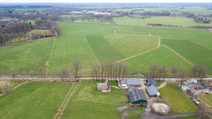 Kan boer Bart Staal een deel van dit grasland laten omzetten in een welkom pensioen? Of houdt Rein Lammers, vanaf de overkant, een volledig groen uitzicht?