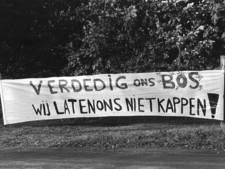 Exact 35 jaar na bomenkap Amelisweerd wordt opnieuw geprotesteerd