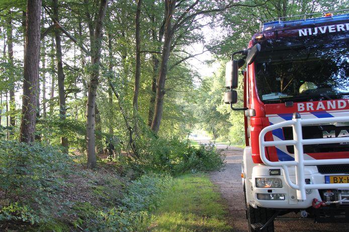 De brandweer heeft het gevaarte afgezaagd en van de weg gehaald.