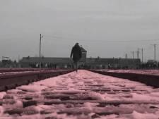Arnhemse mediamaker staat stil bij het niet te bevatten Auschwitz