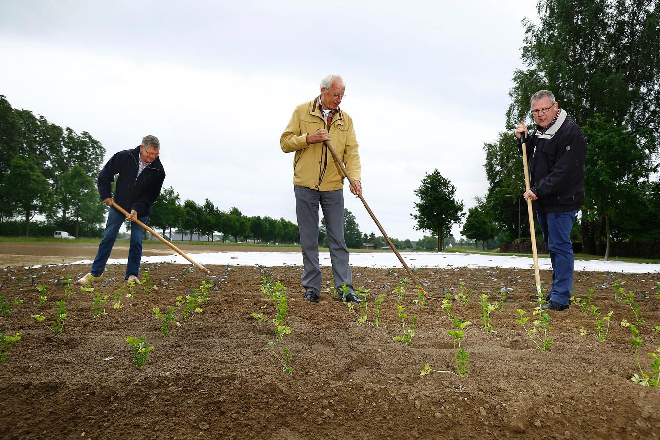 Xaf Hendriksen, Ton Banning en de voorzitter van het Landjuweel 2017 Bas Loeters (vanaf links) aan het werk op de grond aan de Fluunseweg.