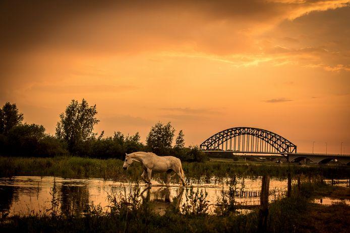 Een mooie plaat van de IJsselbrug. Vanaf 6 juli is de brug voor automobilisten wekenlang ook enkel vanaf een afstandje te zien.