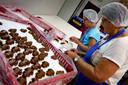 In Petit Ami wordt keihard gewerkt. Het merendeel van de chocolade is voor Kerstmis, Sinterklaas of Pasen.