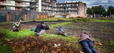 Plotseling stormloop van natuurfotografen bij station Apeldoorn: dit is waarom