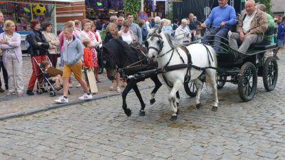 129 paarden op afspraak voor traditionele Amelbergaommegang