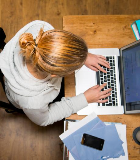 Ondernemers in Losser kunnen 'mixen en matchen'