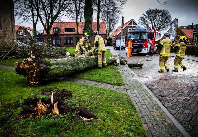 Veel stormschade vandaag in de regio Rotterdam, zoals hier aan de Breestraat in Westmaas.