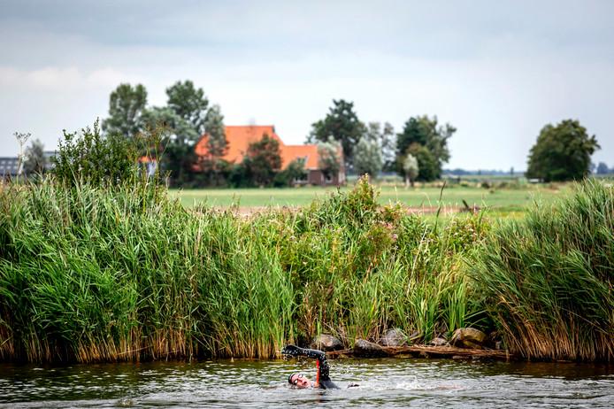 De genomineerde foto van Remko de Waal: Olympisch zwemkampioen Maarten van der Weijden op de eerste dag van zijn 11stedenzwemtocht. De langeafstandszwemmer legt 200 kilometer af om geld in te zamelen voor kankeronderzoek. ANP