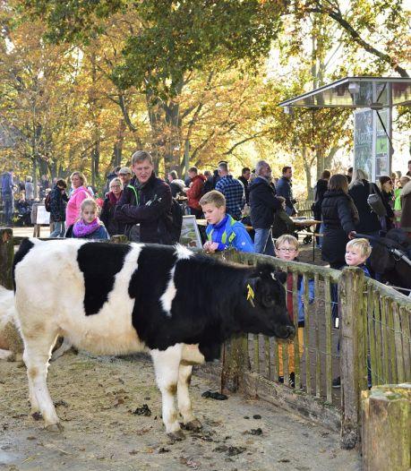 Te vroeg gejuicht: Nederlanders mogen toch nog niet naar dierentuin Nordhorn