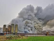 Zeer grote brand in Brabantse stal: 3000 varkens komen om het leven