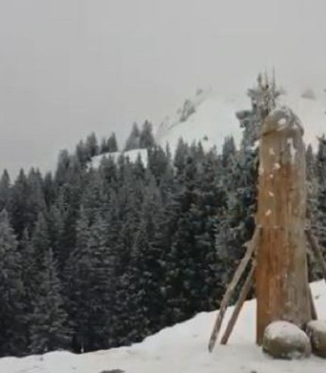 Houten penis terug op Duitse bergtop, maar wel langer en dunner