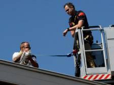 Meeuw van dak gered