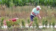 """Etienne (80) wandelt met kruiwagen straat af om zwerfvuil op te rapen: """"Als gepensioneerde heb ik tijd. Dus waarom niet"""""""