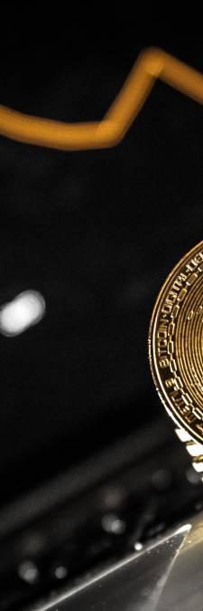 Cryptomunten beleven horrorweek: 'Mensen lezen niet goed'