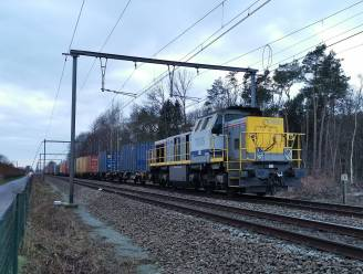 Treinverkeer op lijn Gent-Antwerpen verstoord door defecte goederentrein