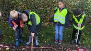 Leerlingen planten 900 bloembollen aan De Wissen