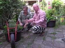 De moestuin in: #28 – De mobiele tuinen van Gert Jan