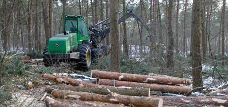 Nieuwe beheerder voor Sonse bossen