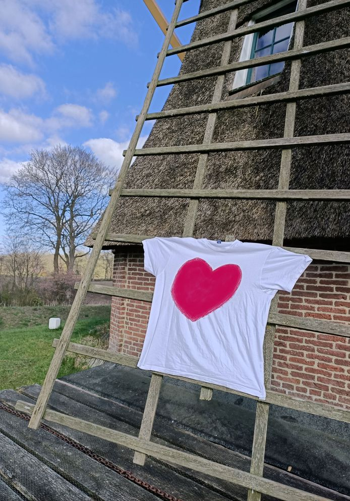 Bezoekerscentrum Ommen wil 'hart voor de zorg' op de molens laten draaien.
