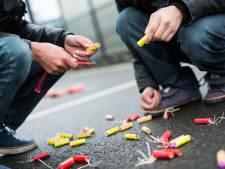 Wijk bij Duurstede krijgt twee vuurwerkvrije zones
