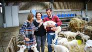 """Drie Korte Ketens uit het Hageland dingen mee voor eerste """"Korte Keten Kop"""""""