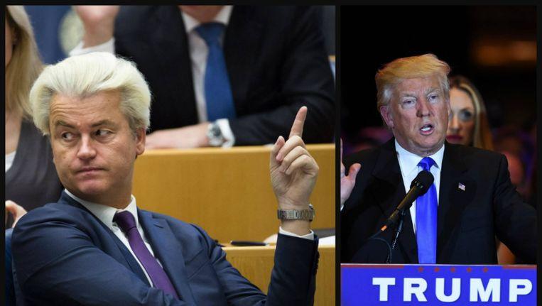 Wilders over Trump: Hij heeft lef, veel goede ideeën en spreekt brede groepen in de samenleving aan Beeld anp