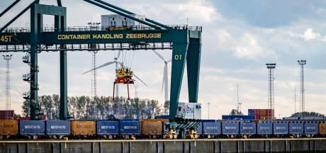 Acht transmigranten uit koelcontainer gehaald in transportzone Zeebrugge
