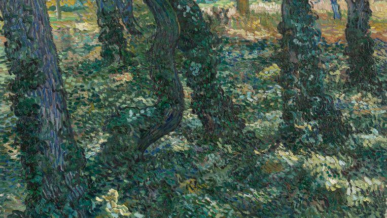 Kreupelhout, 1889 Beeld Van Gogh Museum