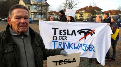 Duitse rechter verbiedt kap bomen voor bouw eerste Europese Teslafabriek