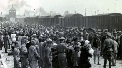 15.000 moorden per dag: nazikampen nog tien keer dodelijker dan gedacht