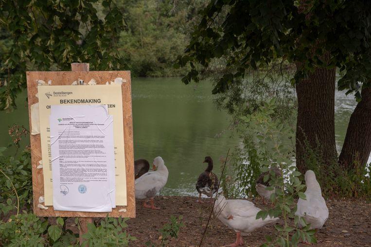 Vorig jaar was er ook al een recreatieverbod aan het meer in Destelbergen.
